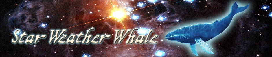 Star Weather Whale