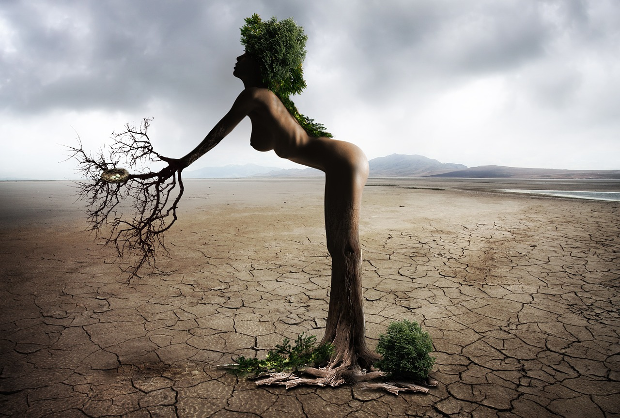 Planet Venus is in her 40 day in the desert transformation between the Capricorn and Leo cycles.