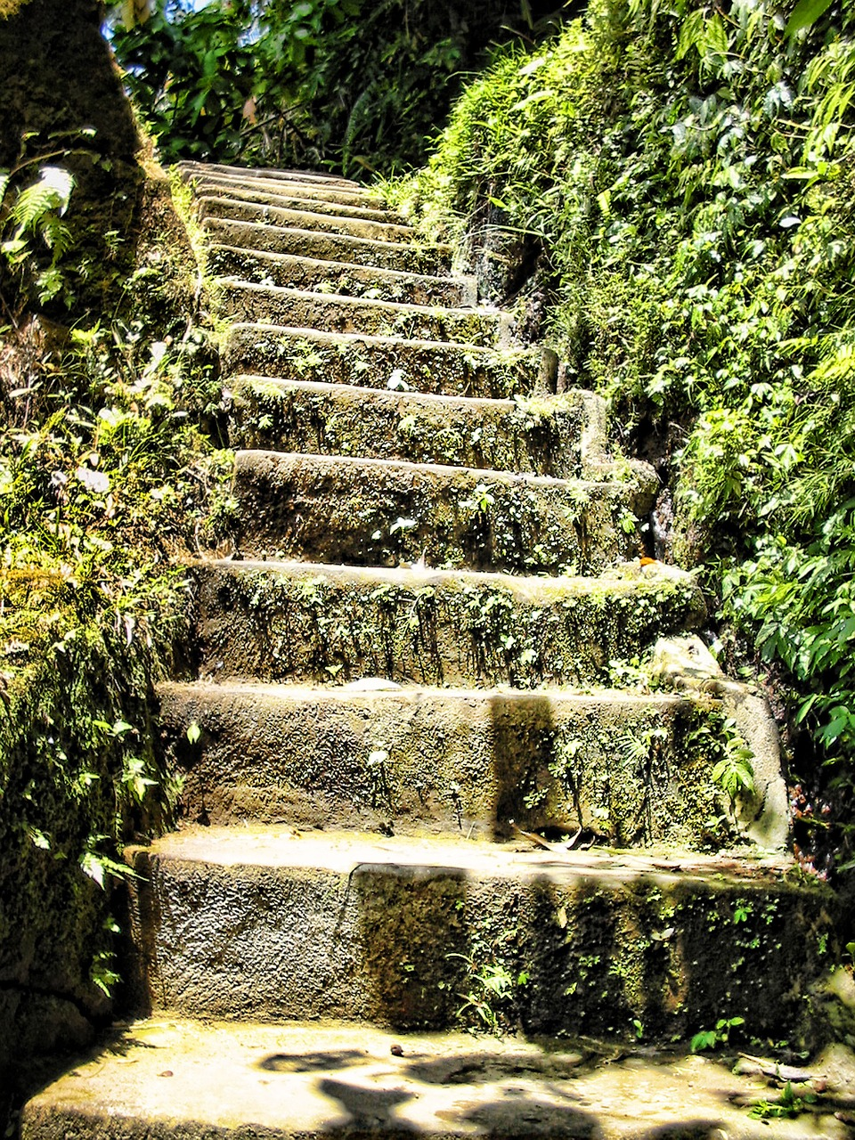 stairs-975595_1280