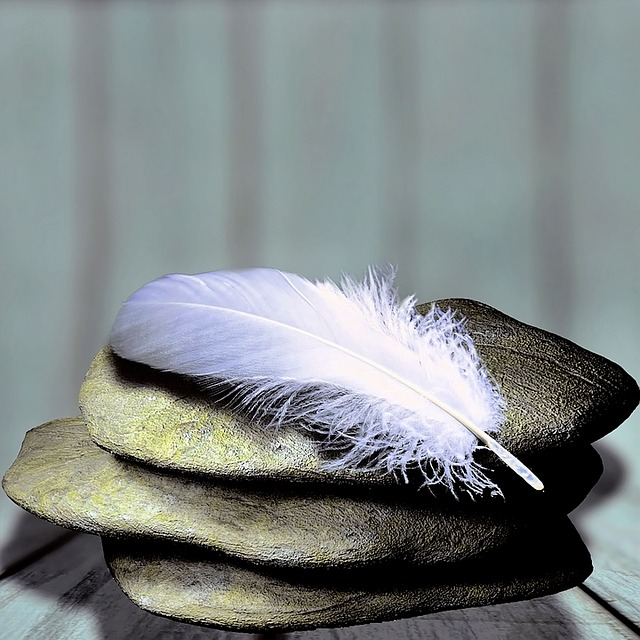 feather-1359097_640