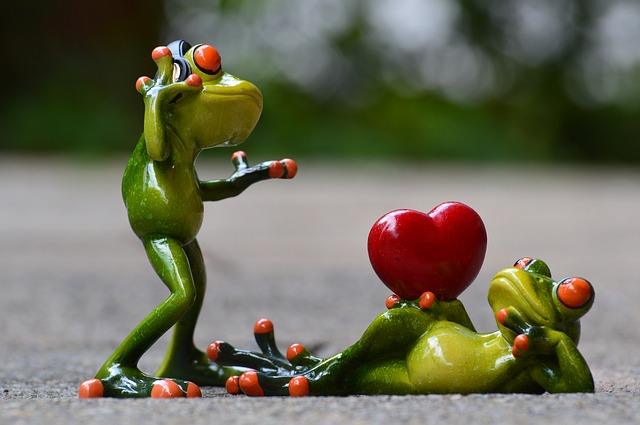 frogs-903170_640